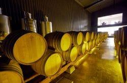 Falua wine Portugal