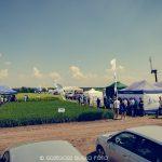 Panorama pól w Śremie Timac Agro