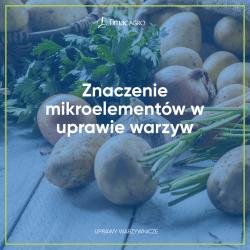 Znaczenie mikroelementów w uprawie warzyw