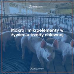 Mikro i makroelementy - żywienie bydła mlecznego