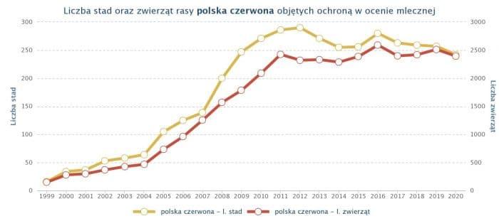 Rasa bydła polska czerwona