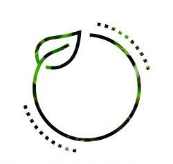 Logo INNOVABIO Square