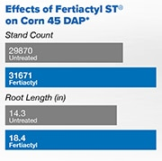 Effects of Fertiactyl in Stand Count and Root Length