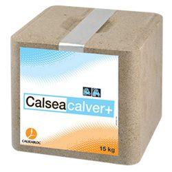 Calseacalver