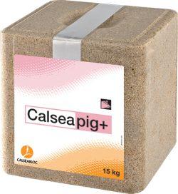Calseapig