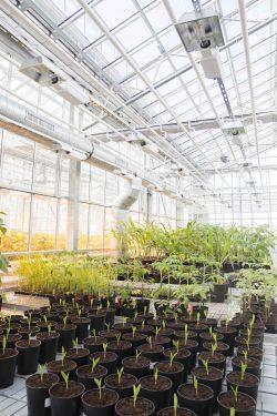 5 000 m2 dédiés à la recherche