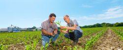 expertos-agricultura-sostenible