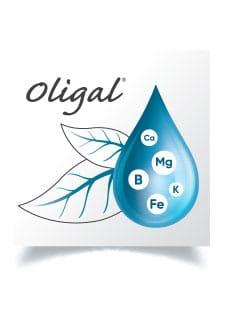 OLIGAL®