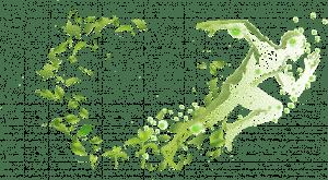 ADN  Noua gamă care își propune să schimbe modul în care este abordată fertilizarea foliară.